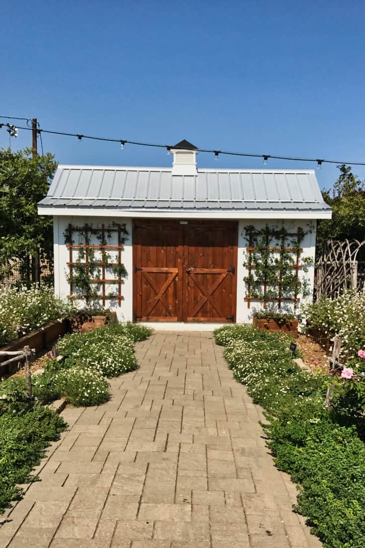 Magnolia Seed and Supply Tool Shed with lattice trellis and climbing vines.