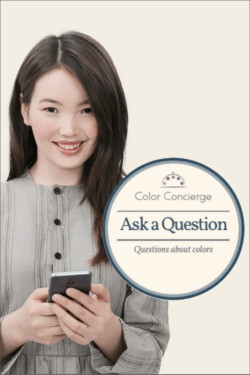Online Color Consulting Ask a Question service