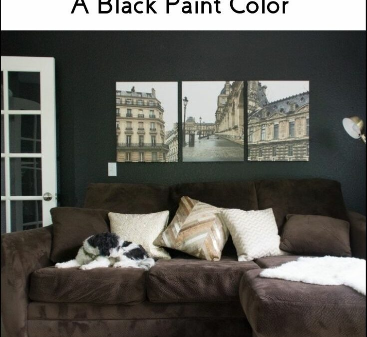 Benjamin Moore Onyx (2133-10) Color Review